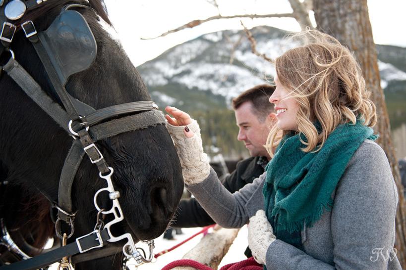 Sleigh ride in Banff captured by Tara Whittaker Photography