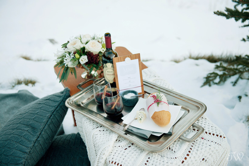 winter picnic captured by Tara Whittaker Photography