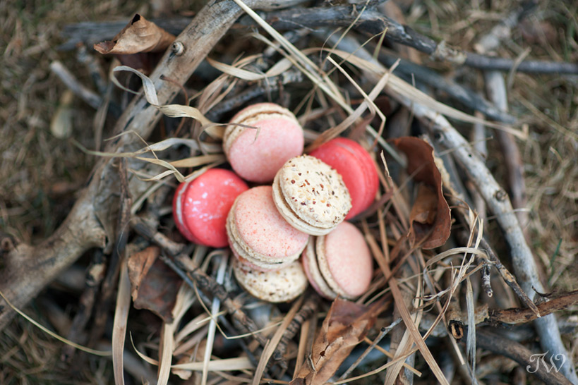 DIY projects a nest of macarons captured by Tara Whittaker Photography