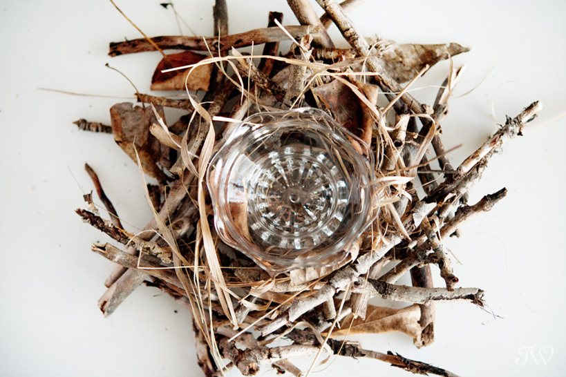 DIY projects building a nest captured by Tara Whittaker Photography