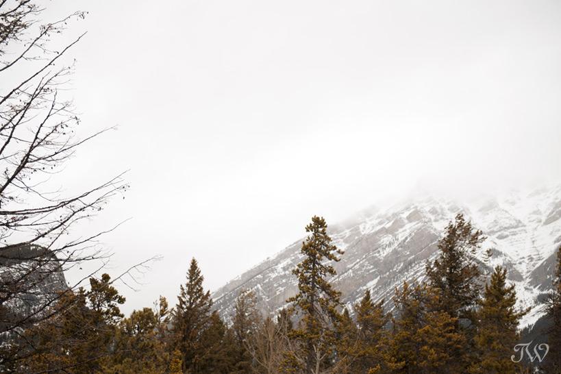 Mountain view from the Wapiti Longhouse at Buffalo Mountain Lodge captured by Tara Whittaker Photography