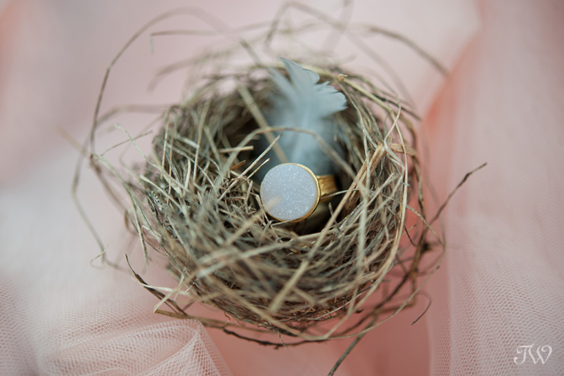 ring from Adorn Boutique in a nest captured by Tara Whittaker Photography