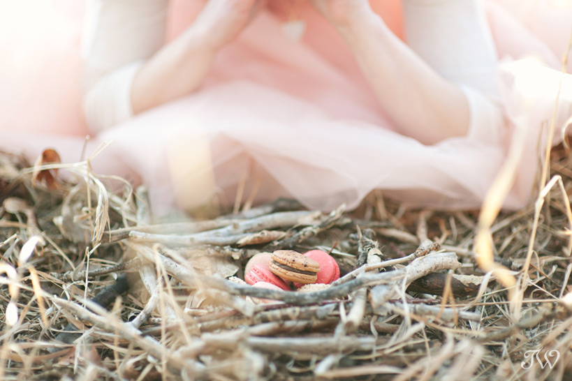 Nest of macarons captured by Tara Whittaker Photography